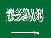 注册沙特阿拉伯公司